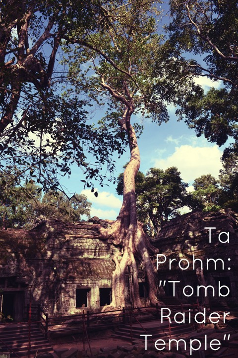 ta prohm tomb raider temple