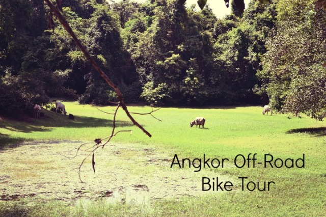 angkor off road bike tour