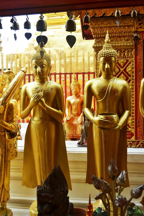 chiangmaimountain19