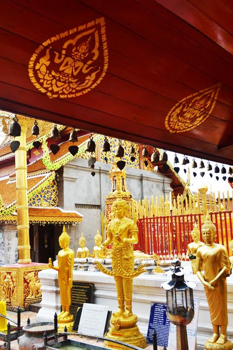 chiangmaimountain25