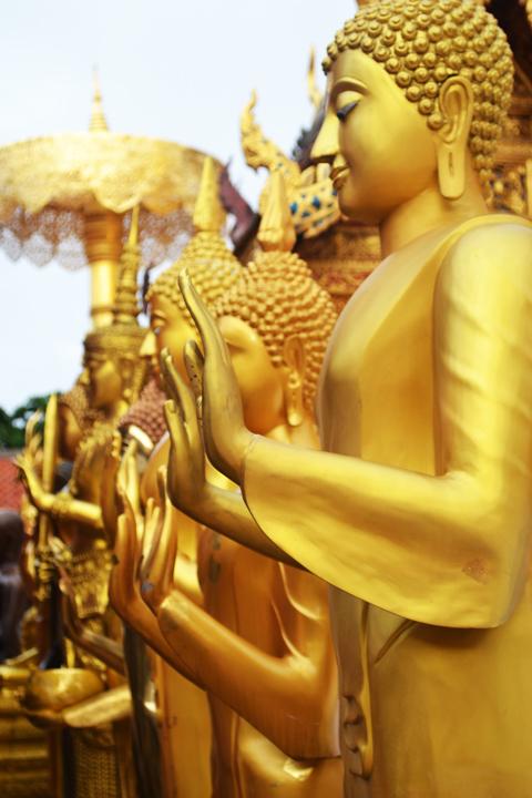 chiangmaimountain43