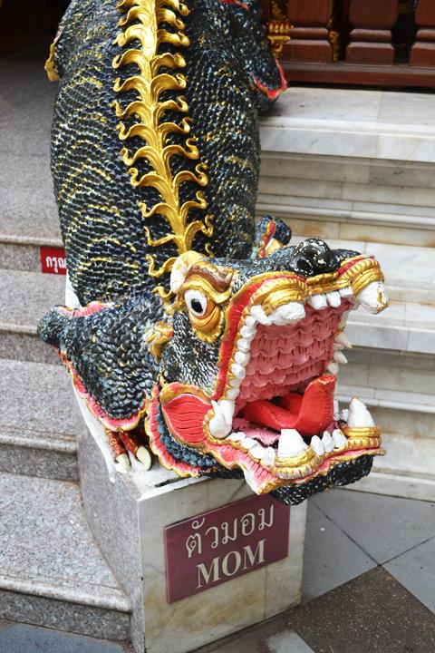 chiangmaimountain51