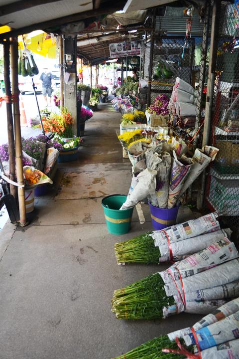 market16