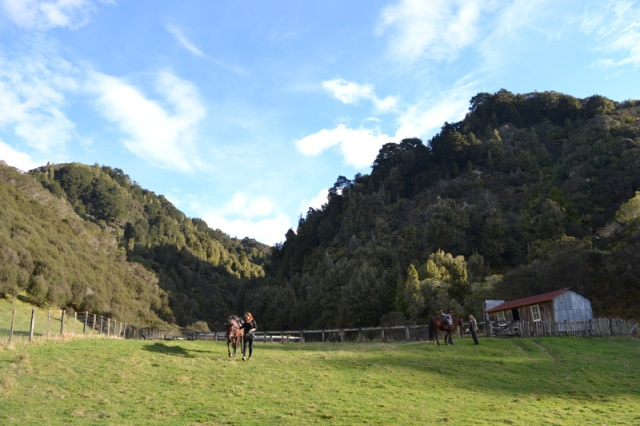 Horseback riding at Blue Duck Lodge in New Zealand