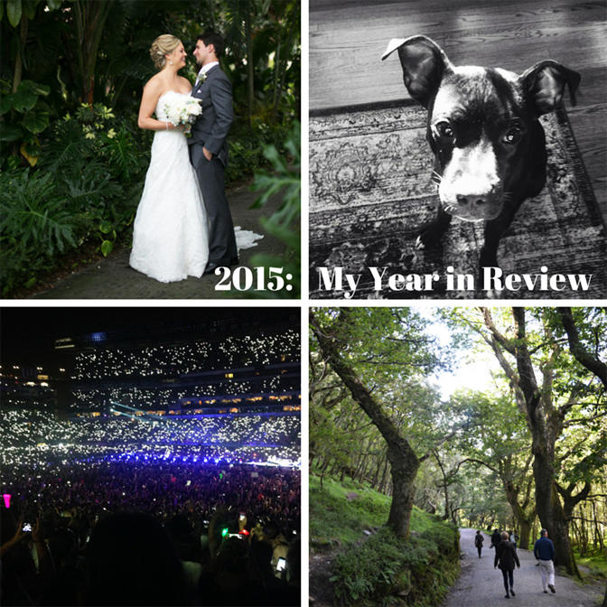 2015- My Year in Review