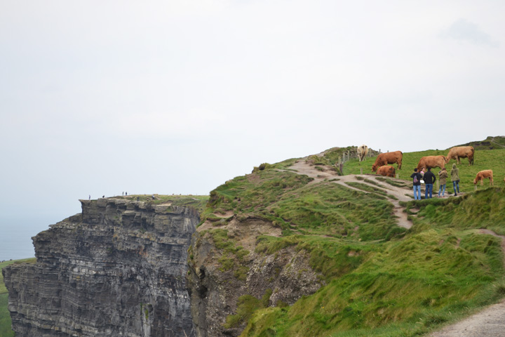 cliffsofmoher18
