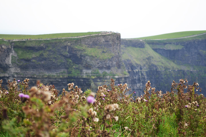 cliffsofmoher8